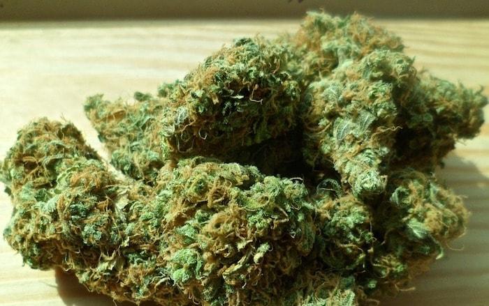 大麻とは?